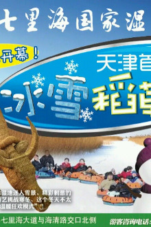 2015年2月7号周六天津七里海湿地公园一日游