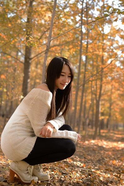 【山羊户外】11月1日周日全北京看最美银杏林