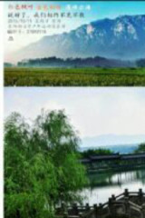 红色枫叶,金色梯田,九月十一号,我们相聚莲峰云海。