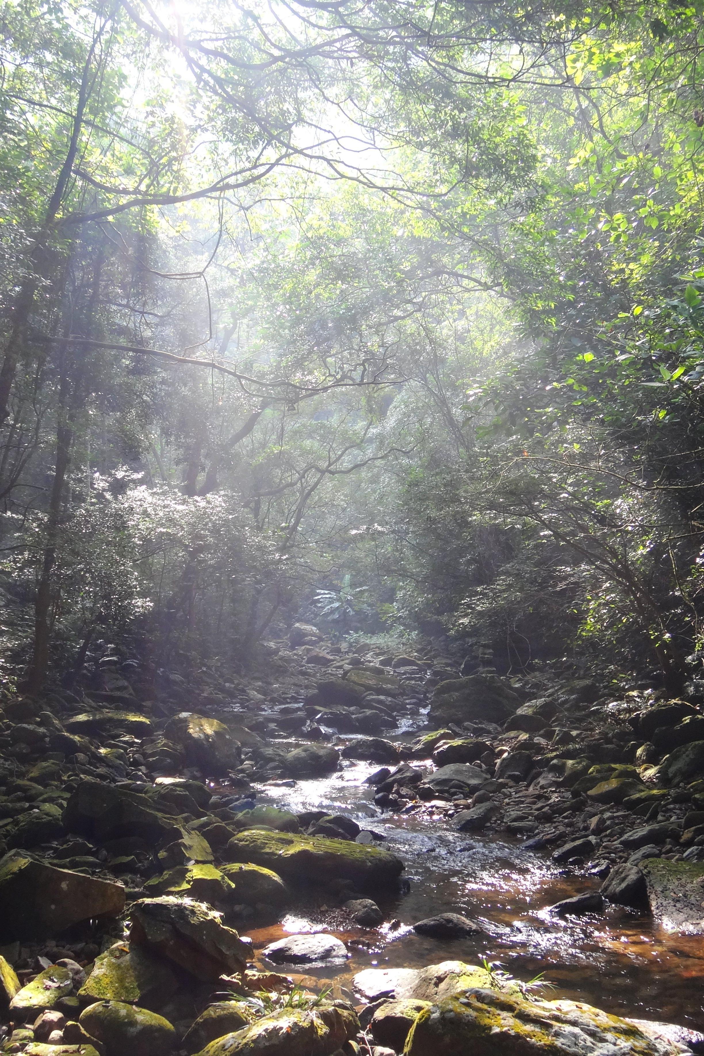 10月1日凤山穿龙岩与江洲地下长廊洞穴探险活动