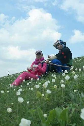 6月14日南山邀您小渠子到直沟看花海采蘑菇休闲摄影游