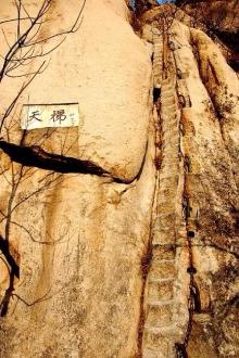 3月28日背包部落组织北京凤凰岭赏野杏花一日行摄活动