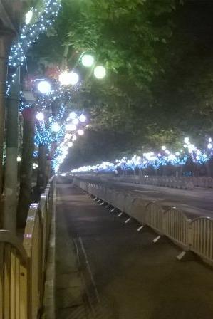8月2日:宝杨路—临江大道—临江公园 夜线