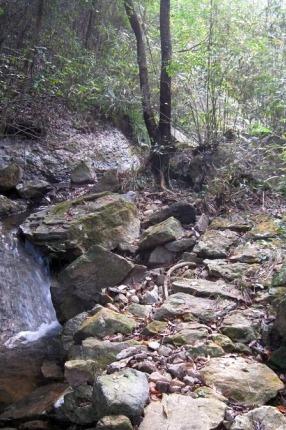8月14日:黄菊岭古道徒步