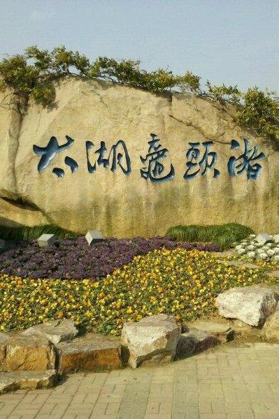 游览世界三大赏樱胜地-太湖鼋头渚!无锡蠡园看桃花