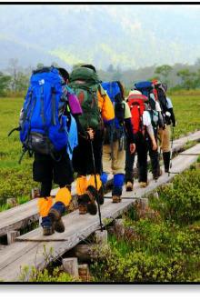 ''亲近大自然,健康徒步走''活动公告