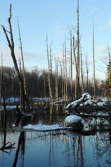 1月21-24日吉林魔界、老里克湖、长白山天池活动