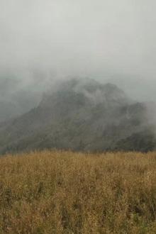 11.15(周日)经典路线:高山草甸踏雪一日游