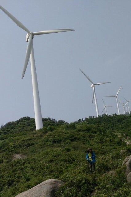 横琴脑背山——大风车