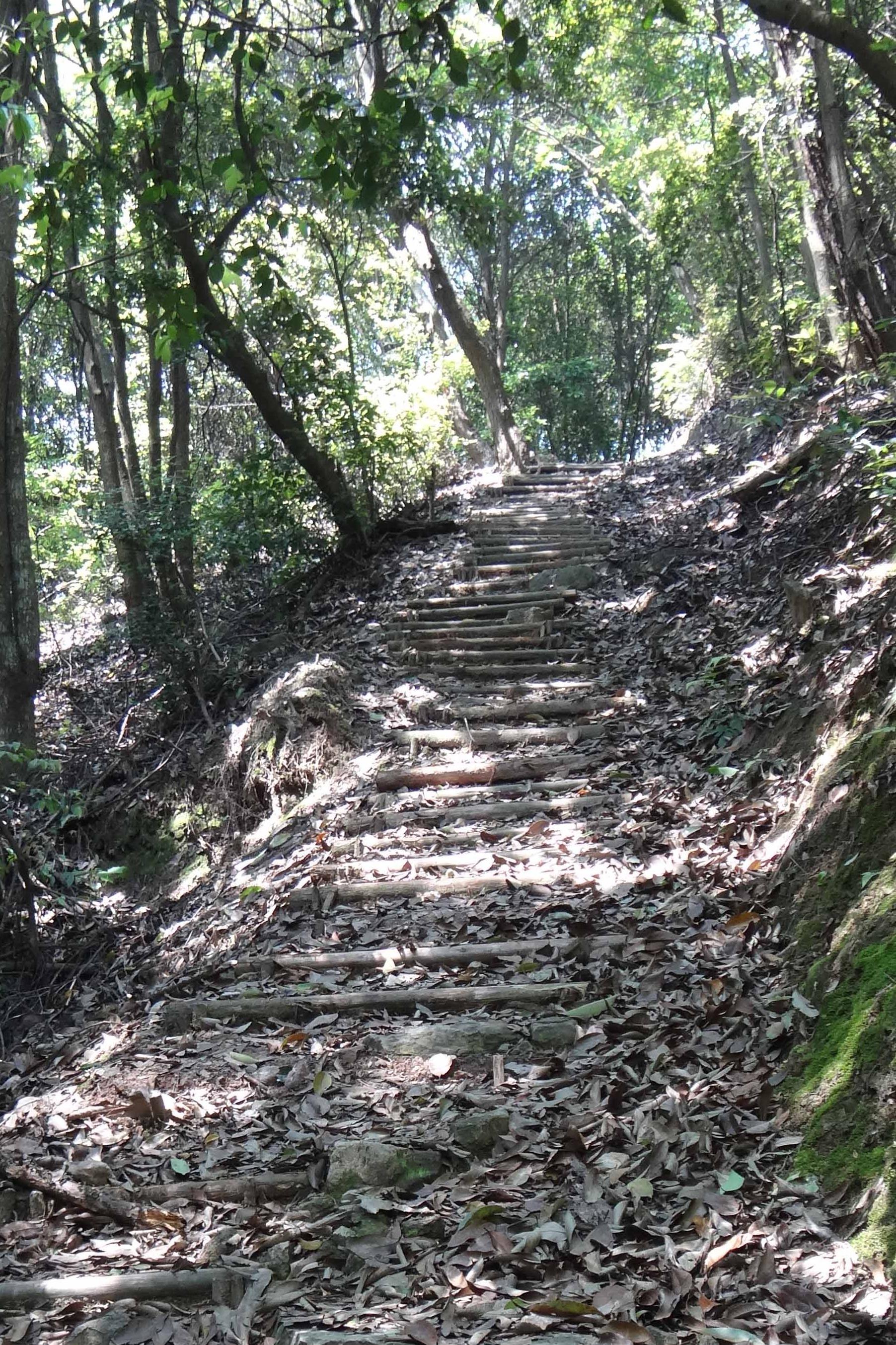 7月16日(周六)龙观迷人谷中坡山公园爬山戏水活动