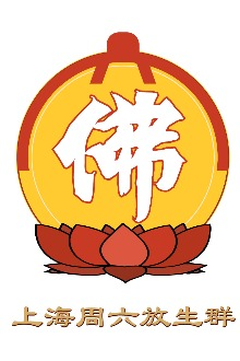2015年2月8日上海江湾镇三观堂寺院共修念佛