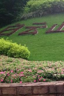 8月11日白云山云台花园徒步