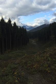 11.28周六  登鸡冠山森林  当天往返