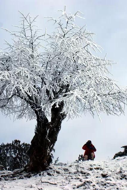【徒步牛背山】云海之巅 最大云瀑雪山摄影平台