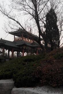 吴桥杂技一日游