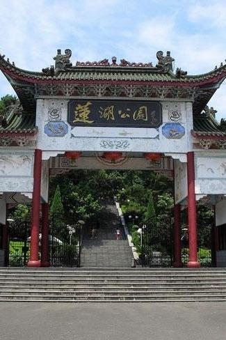 2月14日相约东莞桥头莲湖公园赏百亩油菜花