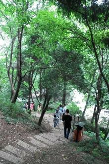 礼拜天,亭林公园爬山