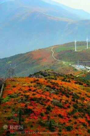 2015年4月11日星期六温州圣井山赏杜鹃花+野炊活动