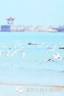 8月16日98/人日照一日游(含快艇及出海捕鱼)
