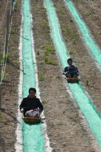 五一假期!天山仙人谷吃喝玩乐一日游!