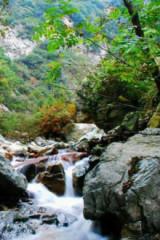 太平森林公园