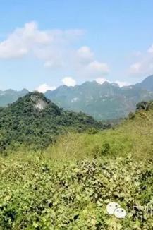 追寻秘境12月4日清远阳山古道穿越行走峰林深处盆地