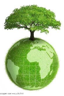 保护环境——现场签名活动