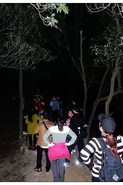 夜爬防空洞——板结樟山