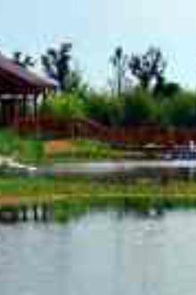 苏州东太湖生态园,震泽古镇一日游