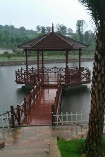 桥头河博盛生态园游玩