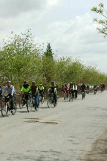 《低碳环保在骑行、时尚健康任我行》