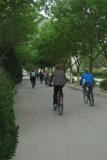 《动感单车、骑乐无穷》