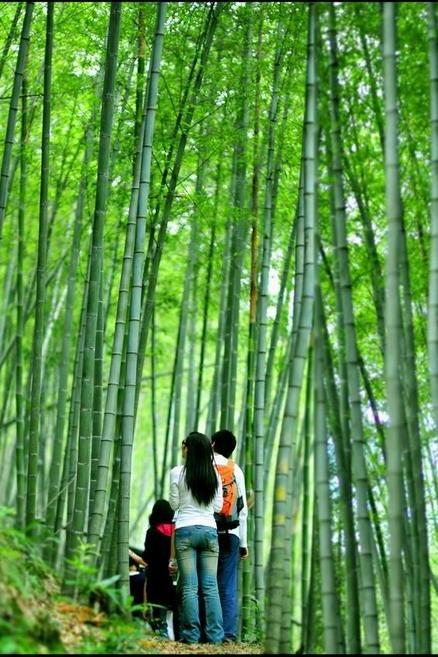 10月3日从化影古精华段溪头村野炊深度感受最美乡村