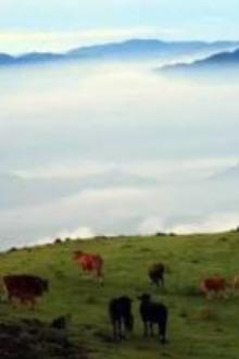 4月9日脚踏三省万时山,穿越高山大草原一日活动!