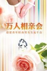 """""""万人相亲会""""贵港地区征婚资料展"""