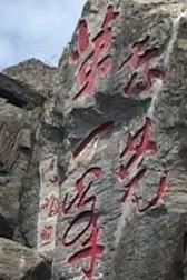 惠州-白云嶂,金黄芦苇飘荡白云间,嶂顶赏无敌风景。