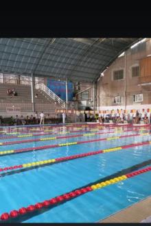2015年7月2日游泳(公园路)体育场泳池一池