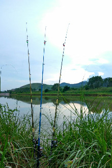 轻松,休闲,一起钓鱼