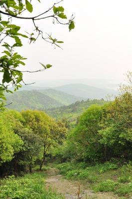 7月24日:穿越无锡群山—军嶂古道徒步活动