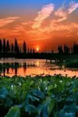 国庆节10月3日自驾固城湖水慢城一日游