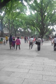 齐聚中山公园