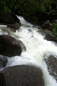 6月7日泽雅金坑峡谷穿越