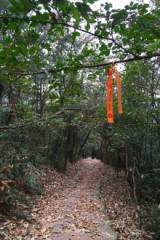 【大满贯】3.26一日穿越古景+最高峰+4A景区
