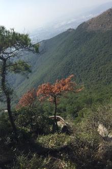 17号爬泉州最高山紫冒山、(帅哥美女跟上吧)