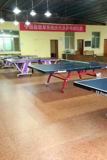 体彩杯乒乓球比赛