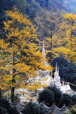 11月12日白岩寺休闲徒步摄影一日游