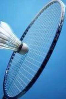 金羽羽毛球活动