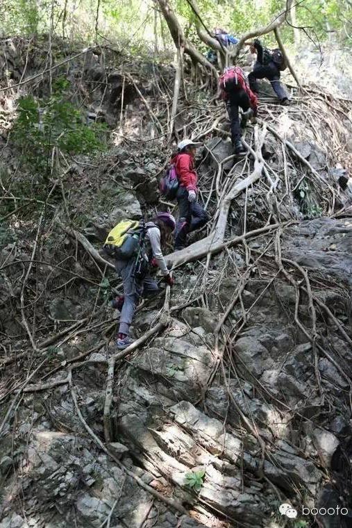 12月13日梧桐山攀爬探险线路——燕子崖