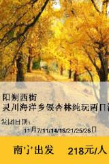 11月21-22日桂林阳朔西街、海洋银杏两天纯玩