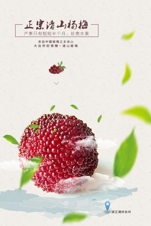 【跟着小彭去旅行】邀您一起吃免费杨梅啦~26号哦!